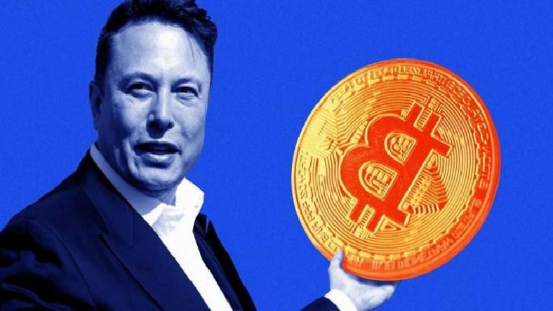 Elon Musk, Darmaduman Olan Piyasayı Toplamaya Çalışıyor
