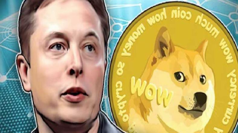 Elon Musk: Doge ile Tesla Satın Almak İster misiniz?