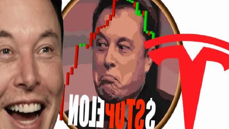 Elon Musk'a Karşı Kurulan Kripto Para: $STOPELON