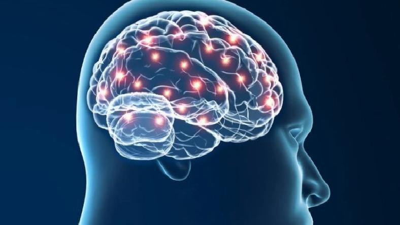 İnsan Beyninde Hareket Eden Bir 'Düşünce' Takip Edildi
