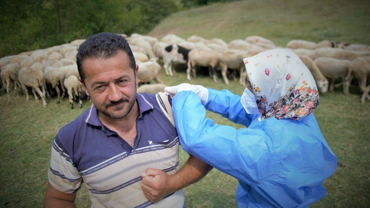Bursa'da çobanlar, yaylada koyun otlatırken aşılarını oldu