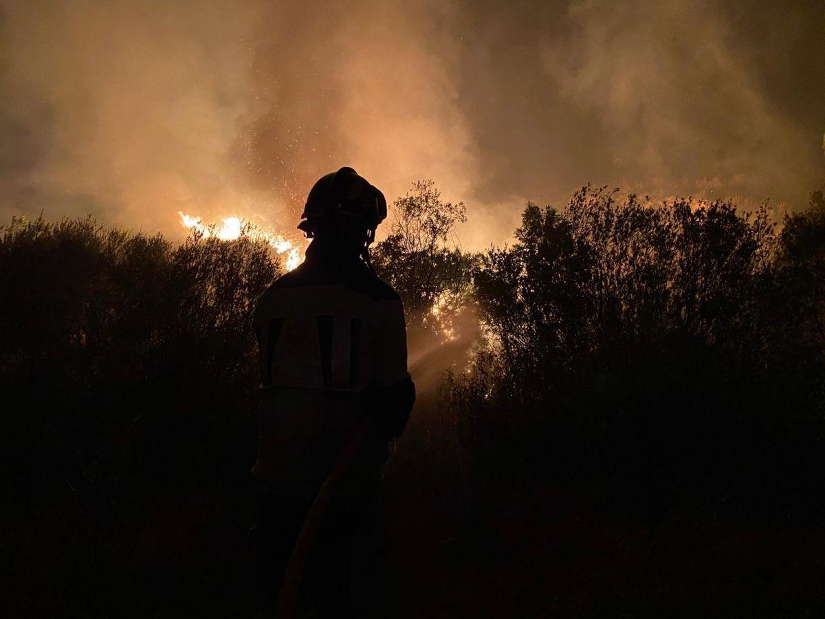 İspanya da 12 bin hektarlık ormanlık alan küle döndü #1