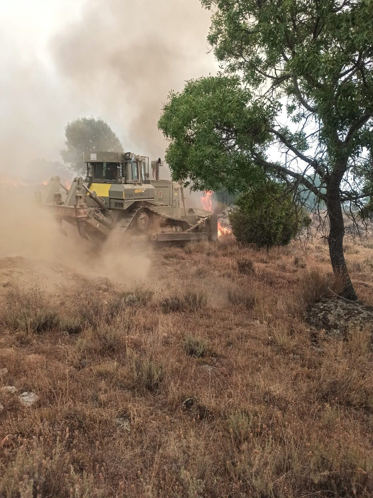 İspanya da 12 bin hektarlık ormanlık alan küle döndü #9