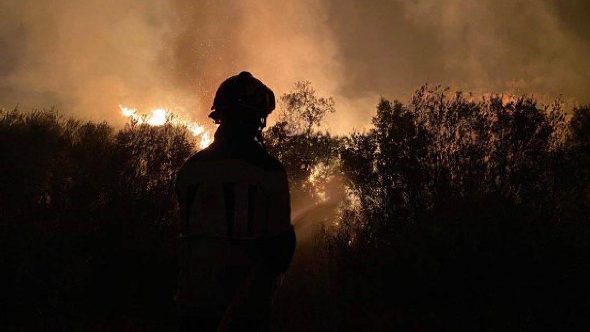 İspanya'da 12 bin hektarlık ormanlık alan küle döndü