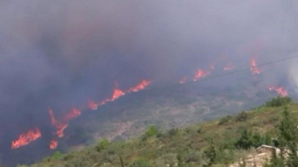 İzmir'deki orman yangını, 14 saat sonra kontrol altına alındı