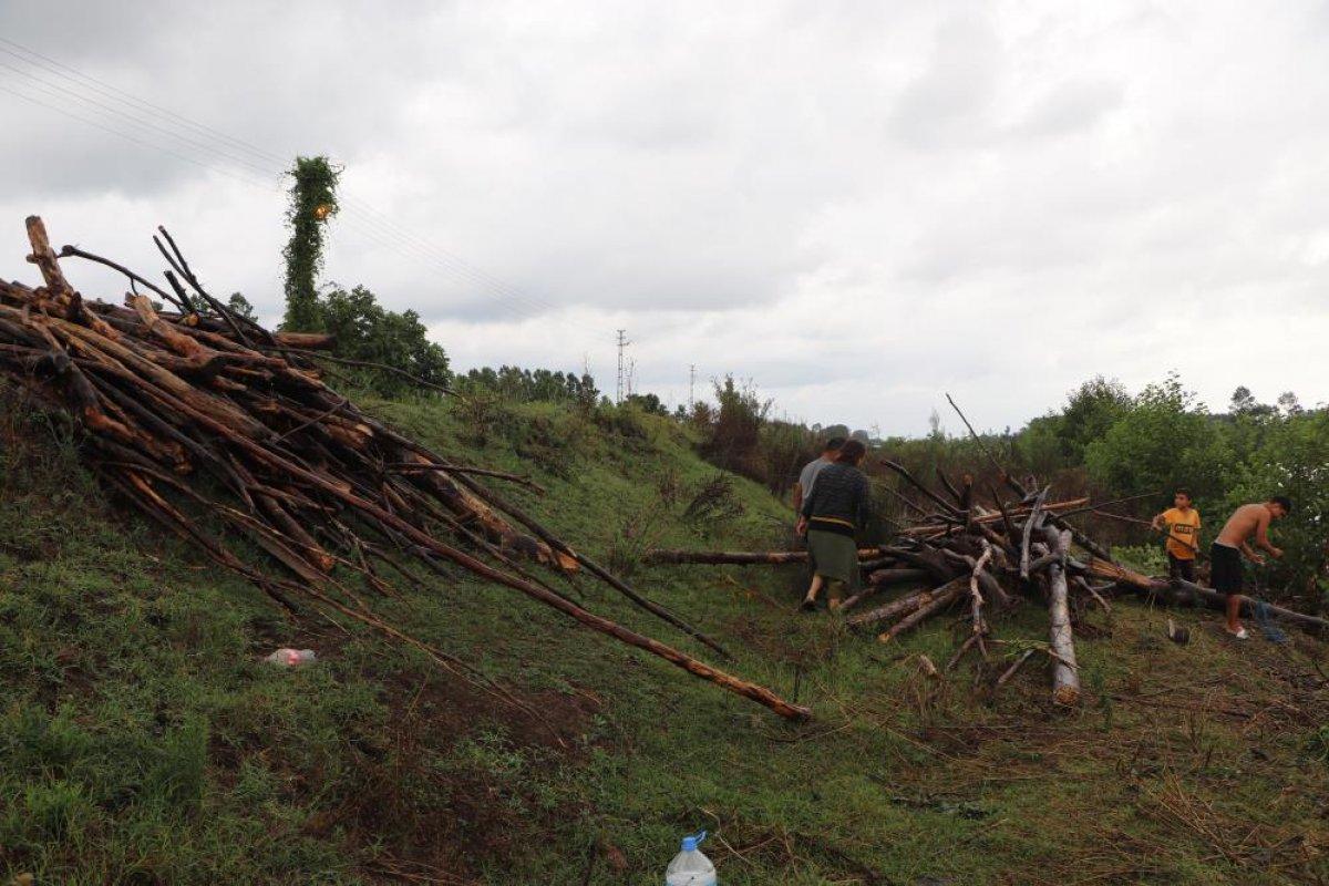 Samsun da sağanak yağış sonrası Terme Çayı ndan odun toplandı #4