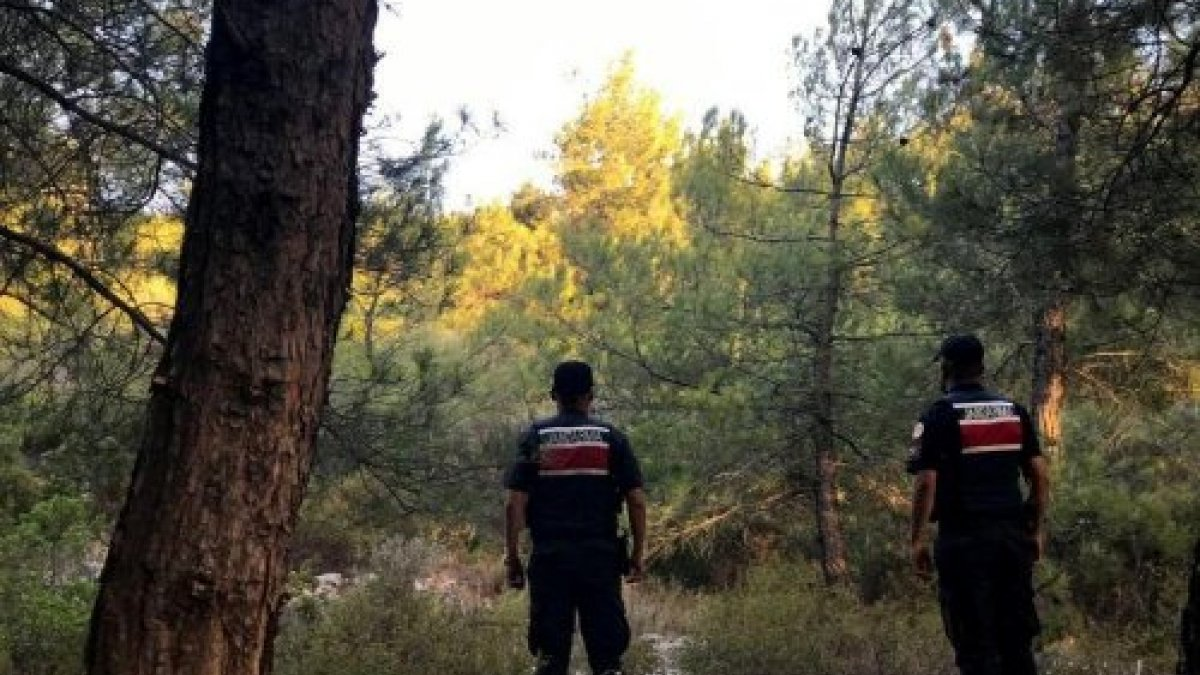 Sarıyer'deki yangına polis müdahalesi