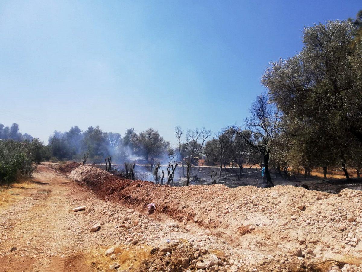 Seydikemer de çıkan orman yangınında 1 hektar alan zarar gördü #1