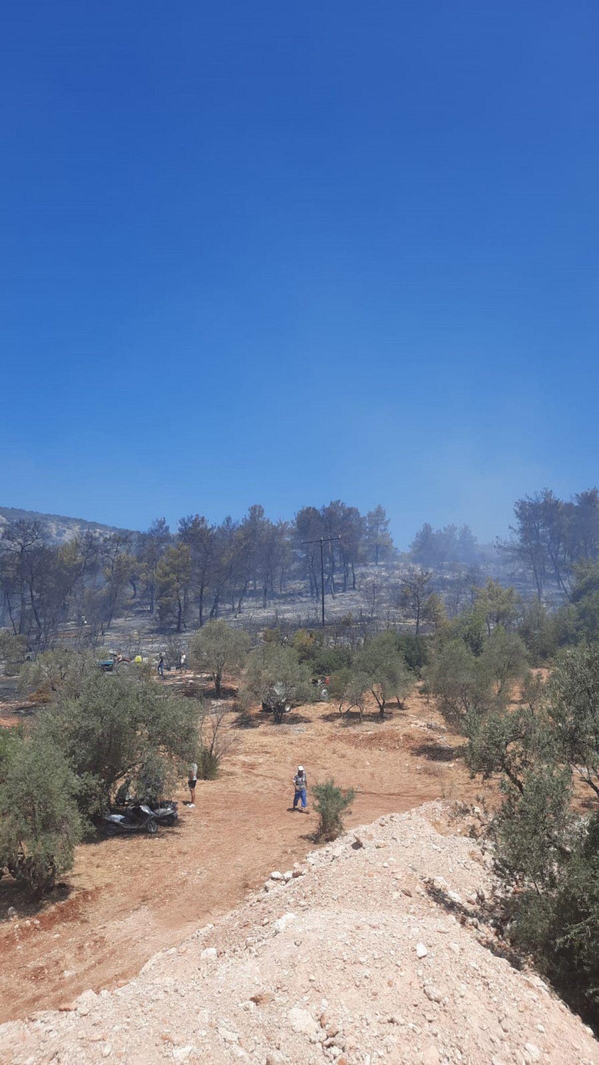 Seydikemer de çıkan orman yangınında 1 hektar alan zarar gördü #4