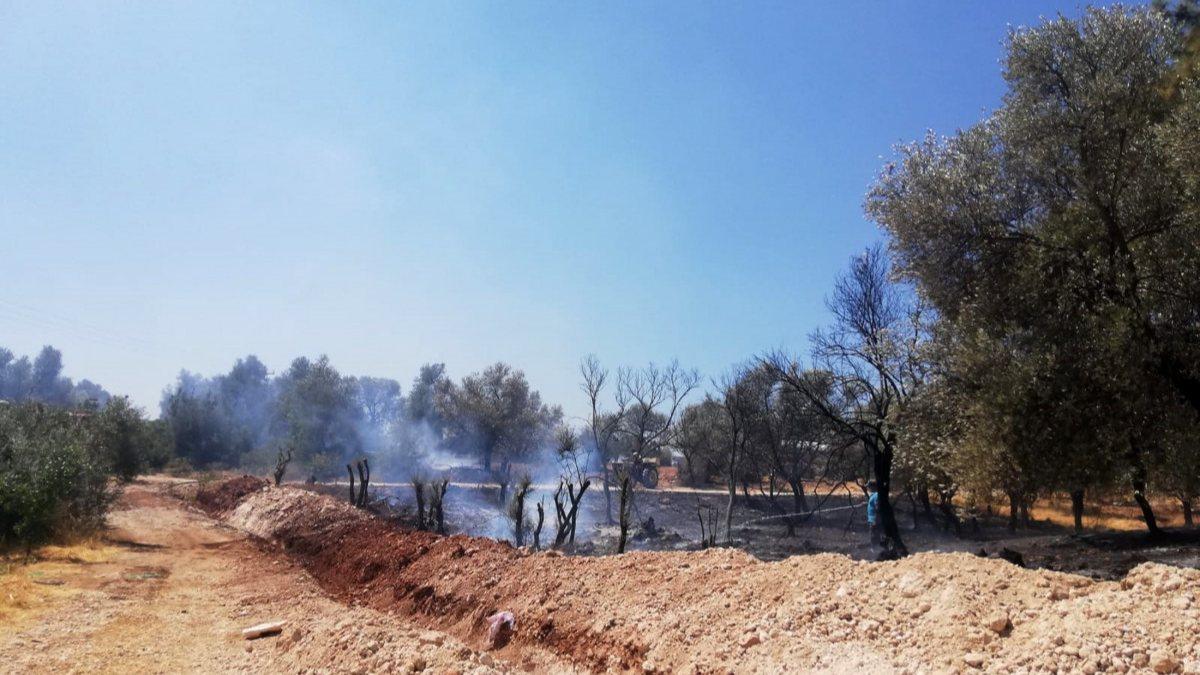 Seydikemer'de çıkan orman yangınında 1 hektar alan zarar gördü