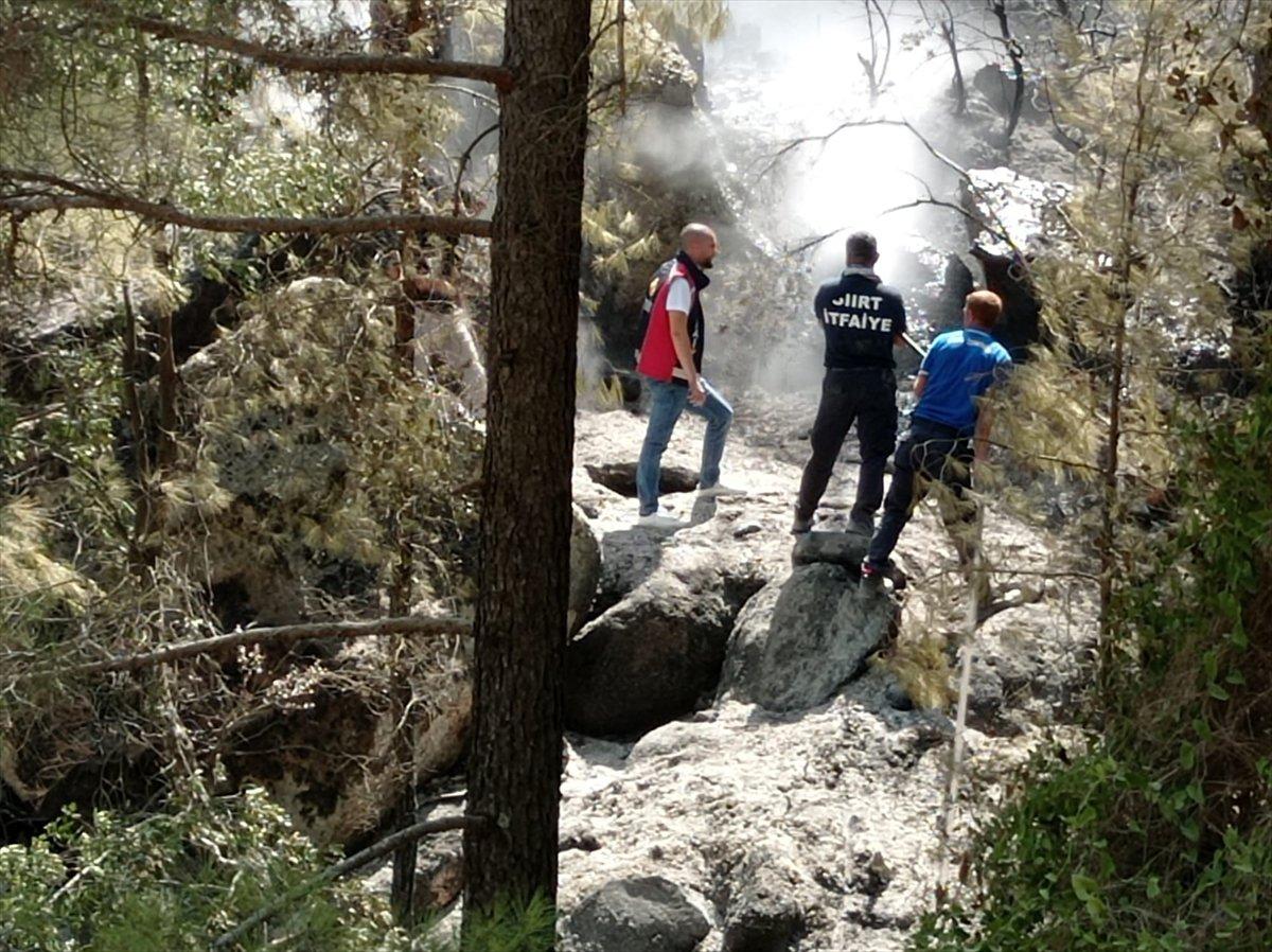 Siirtli itfaiyeciler, Antalya daki yangınlarda yaşadıklarını anlattı #9