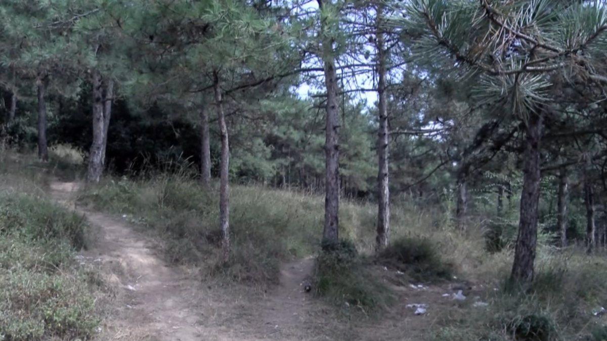 Sultangazi'de ormanda eski karısını öldürdü